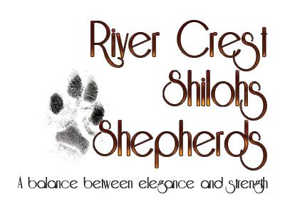 River Crest Shilohs